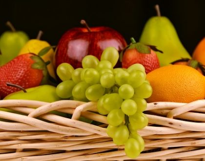 Fruit-bearing in the Believer's Life